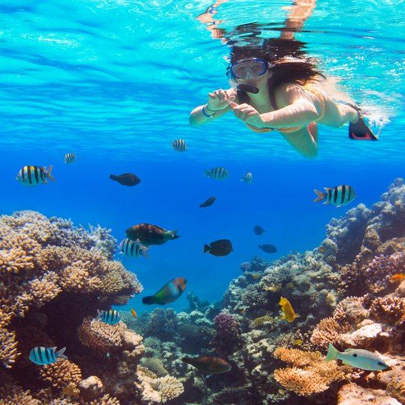 Snorkel in Tabarca, Spain